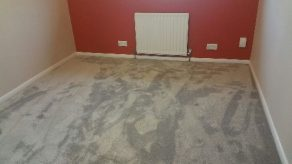 carpets to a bedroom