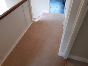Natural 80 20 twist pile carpet landing